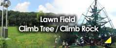 Lawn Field / Climb Tree / Climb Rock